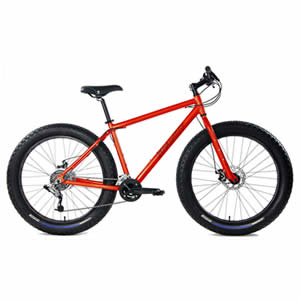 Gravity Monster Mens Fat Tire Bicycle Review